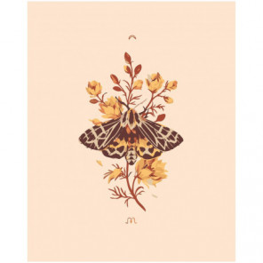 Бабочка на цветке Раскраска картина по номерам на холсте