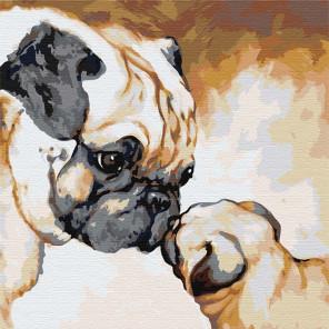 Мопсы / Мама с малышом 100х100 см Раскраска картина по номерам на холсте AAAA-JV11-100x100