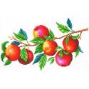 Урожай яблок Канва с рисунком для вышивки МП Студия