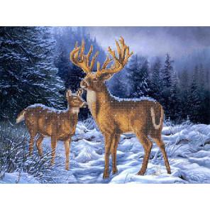 Олени в зимнем лесу Габардин с рисунком для вышивки бисером или крестом Каролинка ТКБЖ 3037