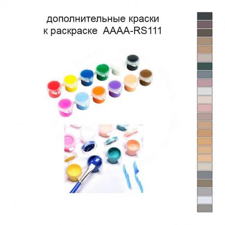 Дополнительные краски для раскраски AAAA-RS111