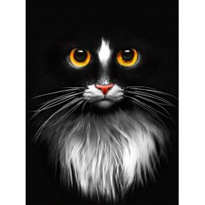 Черный кот Алмазная вышивка мозаика АЖ-1899