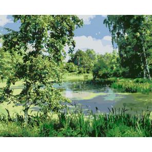 Лесное болото Раскраска картина по номерам на холсте U8102