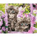 Котята в корзинке Раскраска картина по номерам на холсте