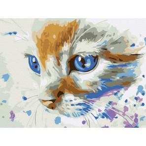 Котёнок Раскраска картина по номерам на холсте KH0998