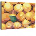Персики 75х100 см Раскраска картина по номерам на холсте