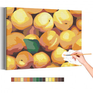 Персики Раскраска картина по номерам на холсте AAAA-RS139