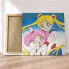 Пример работы Сейлор Мун и Сейлор Чиби Мун 100х100 см Раскраска картина по номерам на холсте AAAA-ANI061-100x100
