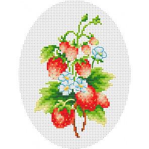 Земляничка Набор для вышивания Многоцветница МКН 15-14