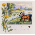 Лошади Набор для вышивания Merejka