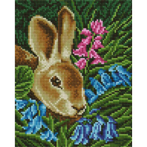 Кролик Алмазная вышивка мозаика на подрамнике Белоснежка 561-ST-S