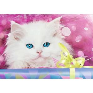 Котик в подарок Раскраска картина по номерам на холсте GX40312