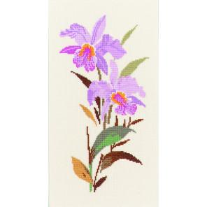 Орхидея Набор для вышивания Eva Rosenstand CW14-229