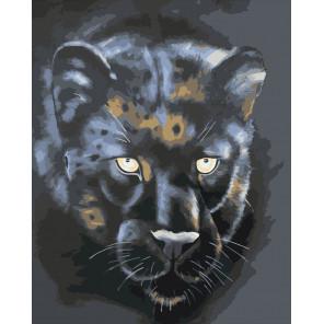 Черная пантера Раскраска картина по номерам CG2032