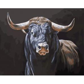 Бык Раскраска картина по номерам CG2015