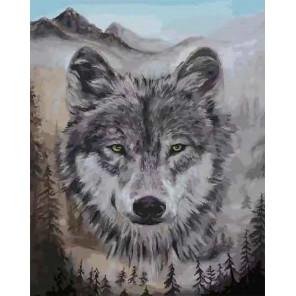 Волк Раскраска картина по номерам CG2016