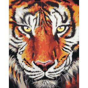 Тигр Раскраска картина по номерам CG2028