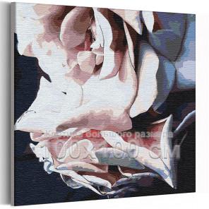Лепестки розы 100х100 см Раскраска картина по номерам на холсте AAAA-RS245-100x100