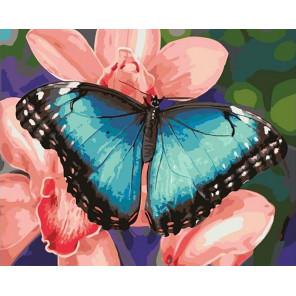Голубая бабочка Раскраска картина по номерам на холсте GX40329