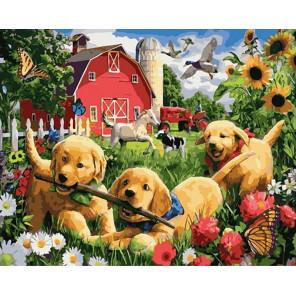 Игривые щенки Раскраска картина по номерам на холсте GX40063