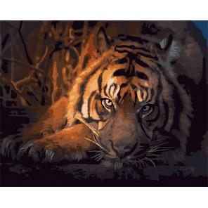 Задумчивый тигр Раскраска картина по номерам на холсте GX40024