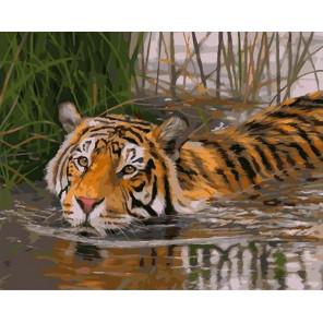 Плывущий тигр Раскраска картина по номерам на холсте GX40003