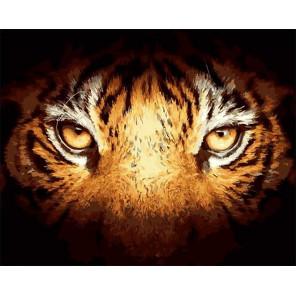 Взгляд тигра Раскраска картина по номерам на холсте GX39987