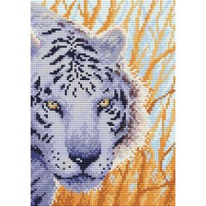 Снежный тигр Алмазная вышивка мозаика Brilliart МС-092