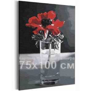 Красный мак на черно-белом фоне / Цветы 75х100 см Раскраска картина по номерам на холсте AAAA-RS391-75x100