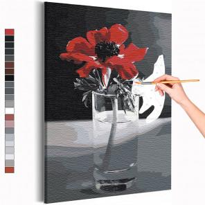 Красный мак на черно-белом фоне / Цветы Раскраска картина по номерам на холсте AAAA-RS391
