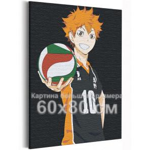 Хината Волейбол Аниме 60х80 см Раскраска картина по номерам на холсте AAAA-ANI021-60x80