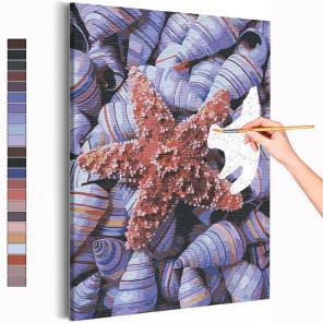 Пример картины и схема Ракушки / Море / Морская тема Раскраска картина по номерам на холсте AAAA-RS231