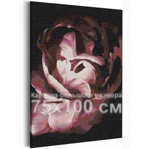 Лепестки пиона / Цветы 75х100 см Раскраска картина по номерам на холсте AAAA-RS234-75x100