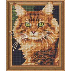 Рыжий кот Алмазная вышивка мозаика Color Kit TSGJ1022