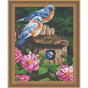 Лесные птички Алмазная вышивка мозаика Color Kit TSGJ1080