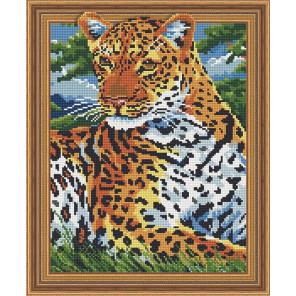 Леопард на отдыхе Алмазная вышивка мозаика TSGJ1122