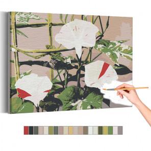 Японский вьюнок / Цветы Раскраска картина по номерам на холсте AAAA-RS228