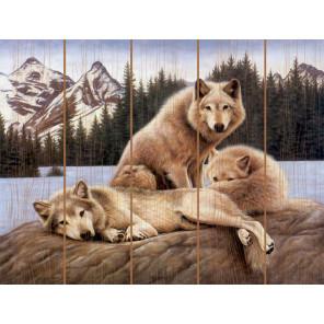 Семья островных волков Картина по номерам на дереве Molly KD0734
