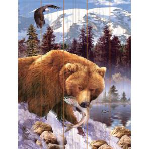 Медвежий улов Картина по номерам на дереве Molly KD0746