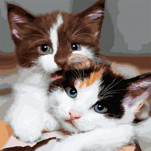 Пример готовой работы Пушистые котята Картина по номерам Molly KH1087