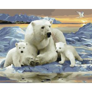 Белые полярные медведи Картина по номерам Molly KK0715