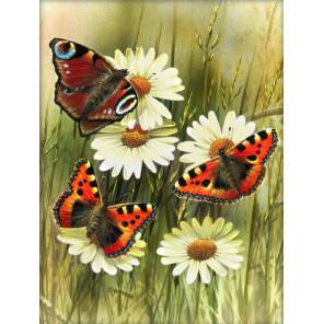 Бабочки Алмазная вышивка мозаика АЖ-1914