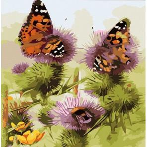 Бабочки и шмели Раскраска картина по номерам акриловыми красками Color Kit