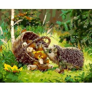 Колючий грибник Раскраска картина по номерам акриловыми красками на холсте Iteso