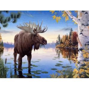 Хозяин леса Раскраска картина по номерам акриловыми красками Color Kit