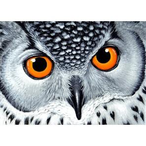 Взгляд совы Алмазная мозаика вышивка Гранни | Алмазная мозаика купить