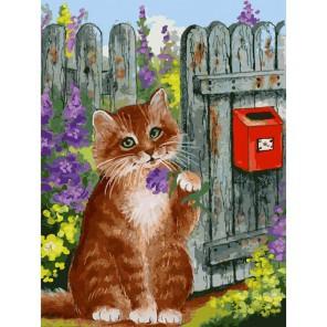 785-AS Ожидание письма Раскраска картина по номерам акриловыми красками на холсте Белоснежка