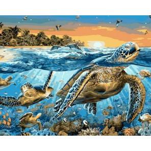 Морские черепахи Раскраска картина по номерам акриловыми красками на холсте Menglei