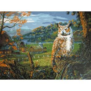 На исходе ночи (художник Терри Доути) Раскраска картина по номерам акриловыми красками Plaid