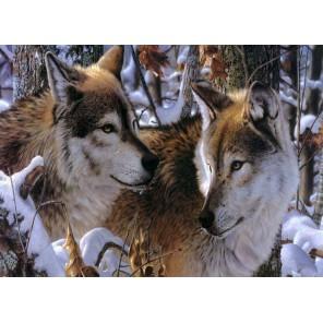 Волки в зимнем лесу Набор для частичной вышивки бисером Color Kit